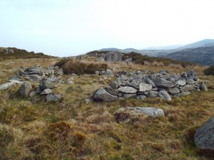 Gallt y Celyn hut circle